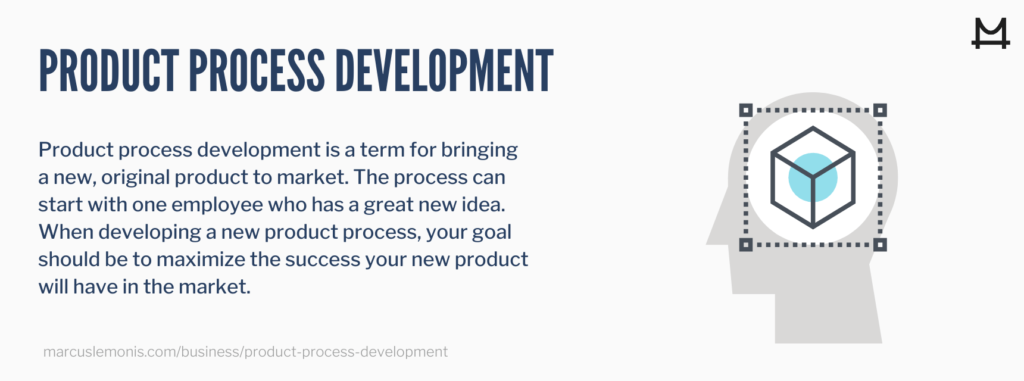 Definition of what a product process development is
