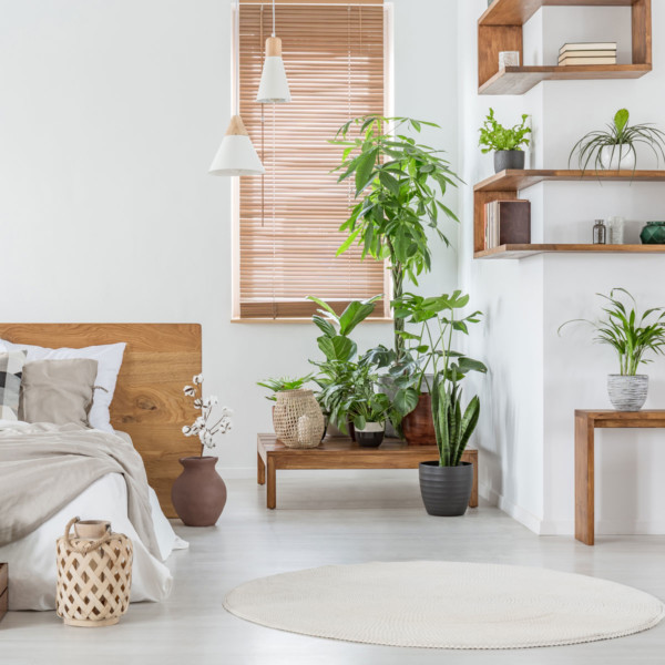 bedroom with wood floating shelves