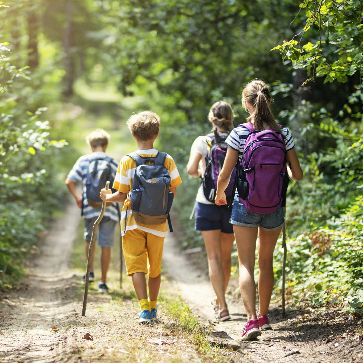 Image of a family on an eco-tour.