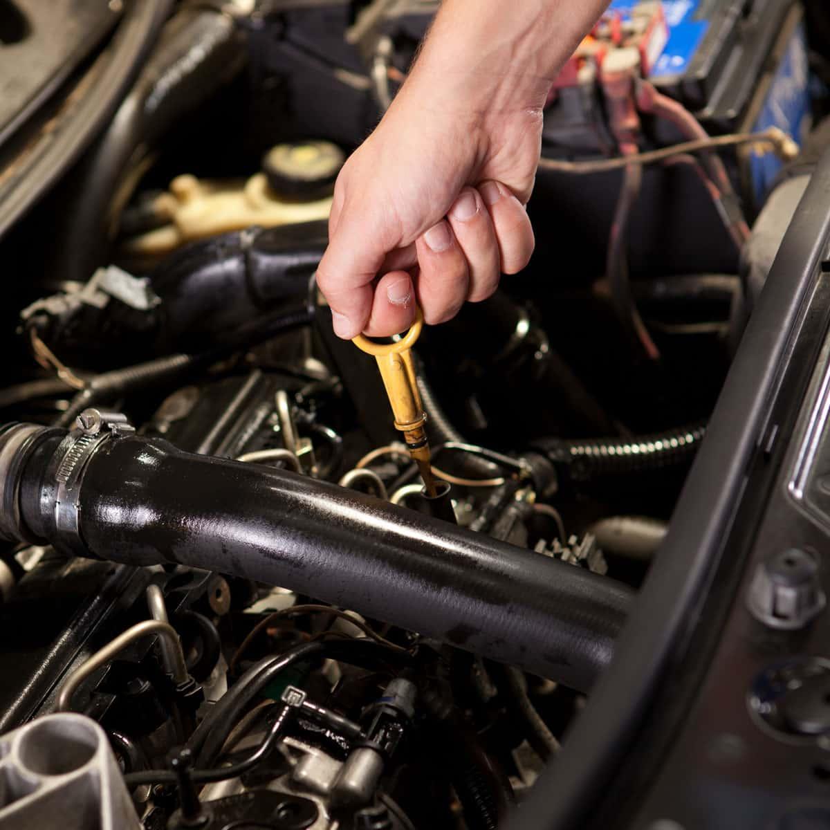 inside car hood checking oil