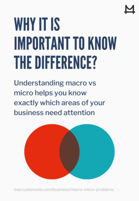 Why it is important to know the difference between micro and macro problems.
