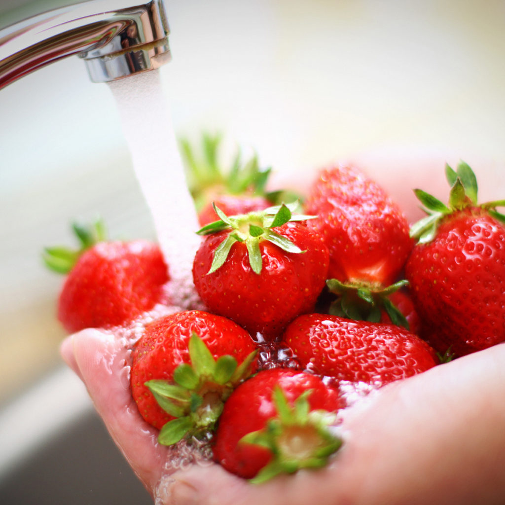 Washing a bunch of strawberries under running water from the sink