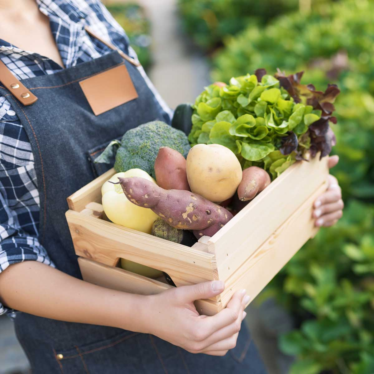Image of someone carrying a crate of vegetables.