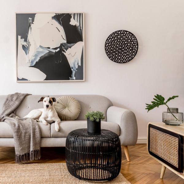 Image of dog laying on modern gray sofa